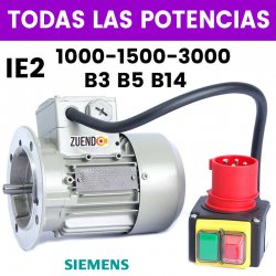 MOTOR TRIFASICO SIEMENS IE2 CON CABLE Y ENCHUFE