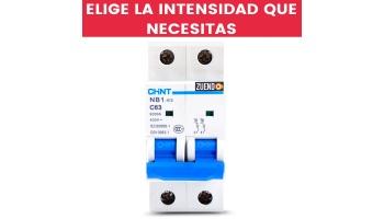 Interruptor Automático Chint 2 Polos todas las Intensidades(A)