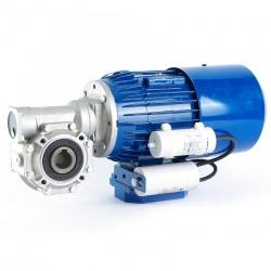 Motorreductor monofásico 220V Elektrim 0,75 kw 141 RPM finales