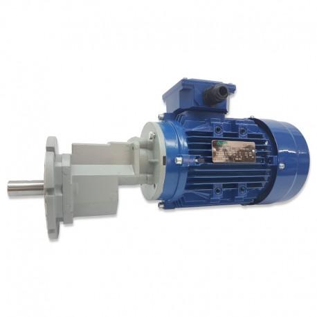 Motor para alimentador 0,75 kw monofásico o trifásico