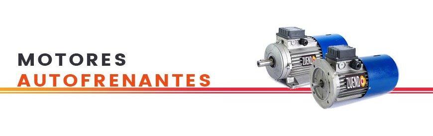 Gran variedad, electrofreno, carcasa reducida, 1500/3000 rpm, B3, B5/B14, silenciosos. zuendo.com