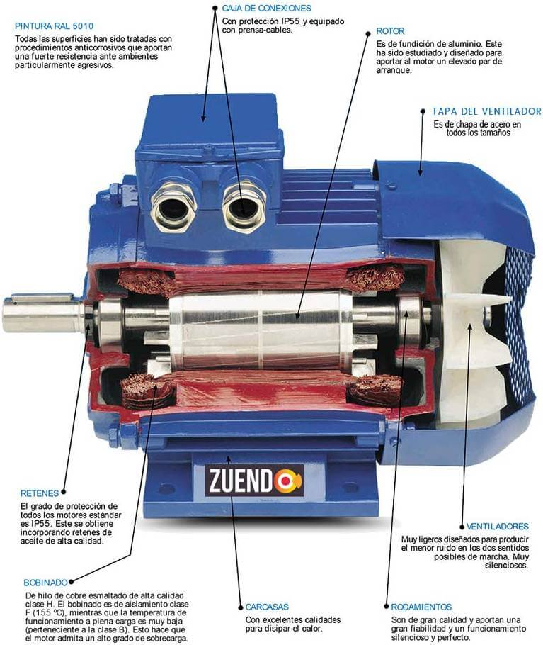Interior motor induccion alren zuendo.com
