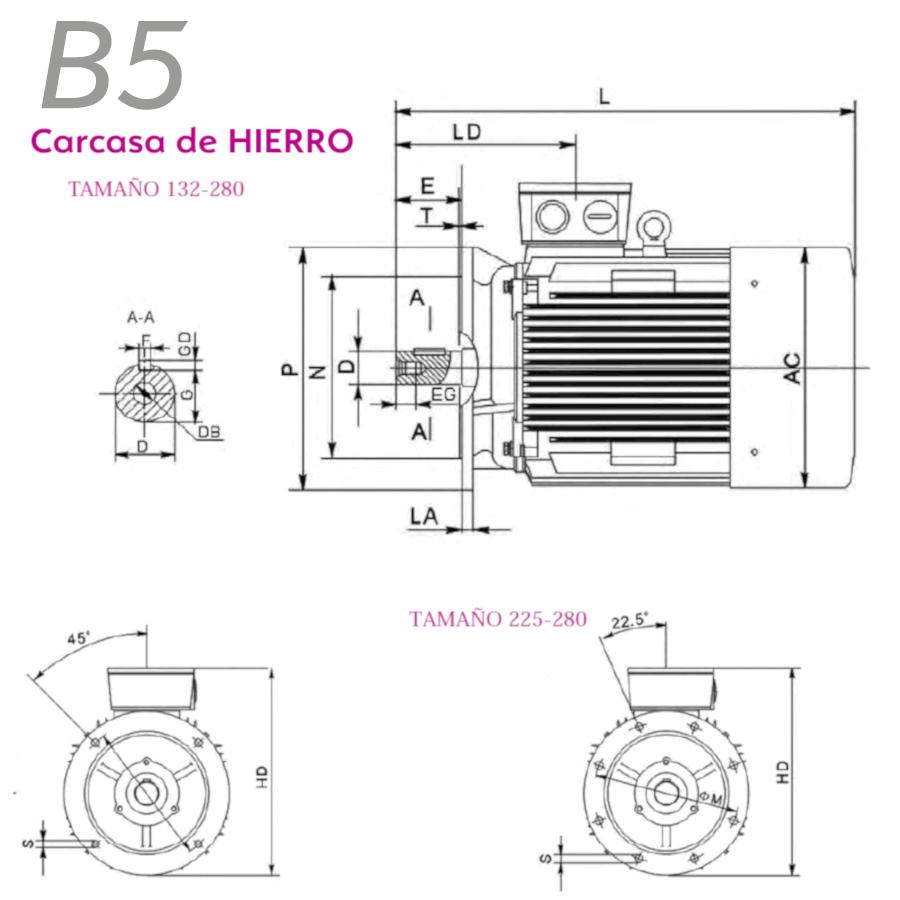 B5 hierro