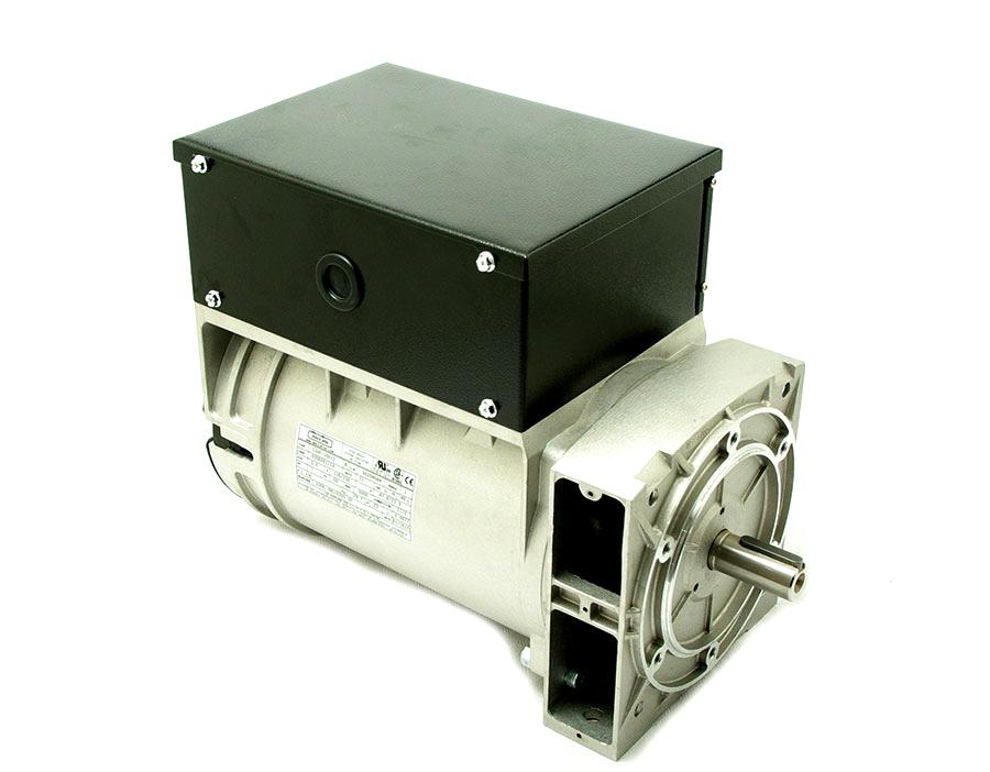 Alternador Mecc Alte monofásico 5,5 KVA a 3.000 rpm con opción de eje libre